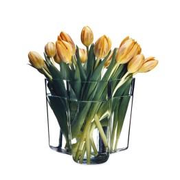 Aalto Vase by Iitalia